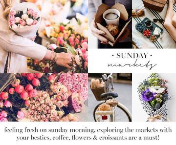 blog market content 2